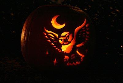 owl-pumpkin-carving